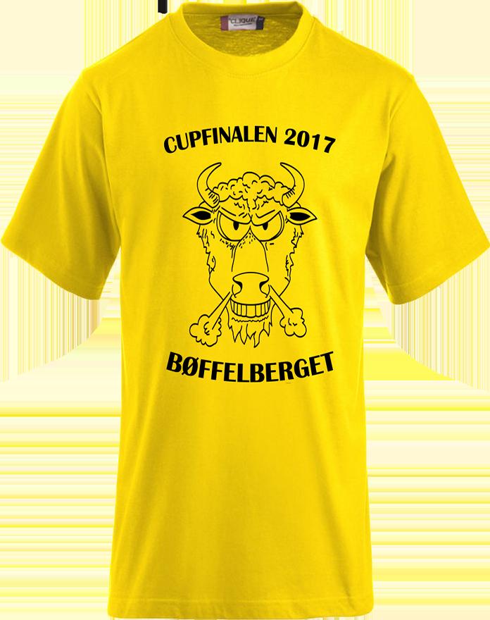 Cupfinale2017_Foran_ny